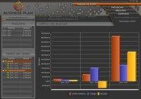 Poinka Business Plan 2013