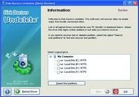 Disk Doctors Undelete Windows