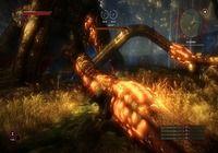 Télécharger The Witcher 2 : Assassins of Kings Mac