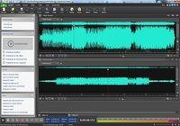 WavePad - Logiciel Éditeur Audio Windows