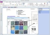 Microsoft Office Professionnel 2013 Windows