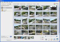 Picasa Windows